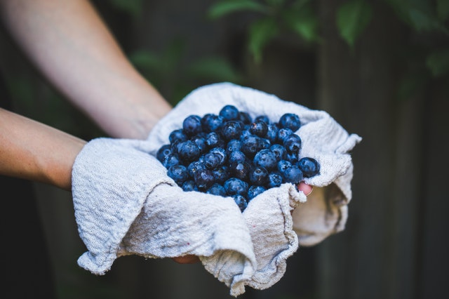 Blueberries Weight Loss