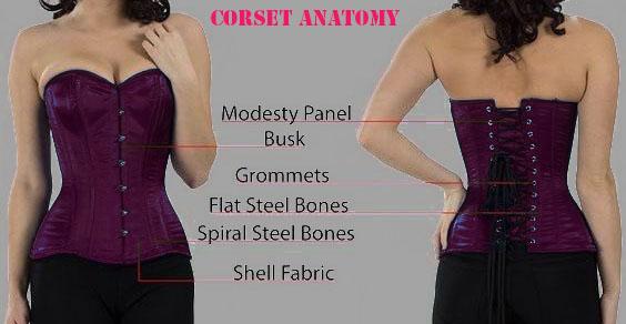 what is waist train corset